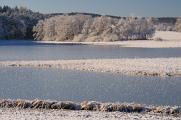zimní krajina u rybníku Žár VII