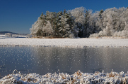 zimní krajina u rybníku Žár X