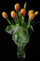 oranžové tulipány I