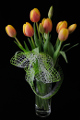 oranžové tulipány II