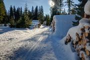 v lyžařské stopě u Filipovy Huti