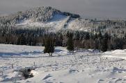 Antýgl (Sokol) a Hamerský potok I