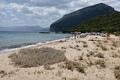 Spiaggia Cartoe
