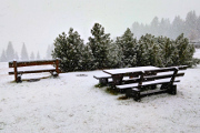 sněhová chumelenice II