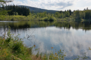 Mlýnský rybník I