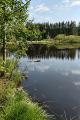 Mlýnský rybník III