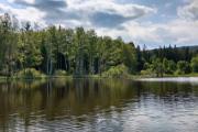 Mlýnský rybník V