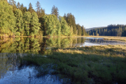 Huťský rybník (Jitronická nádrž)