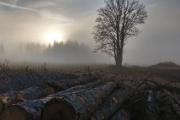 západ slunce na Zhůří I