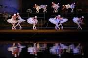 balet Labutí jezero III
