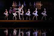 balet Labutí jezero V