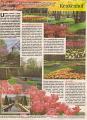 noviny Kaufland č.14/2008